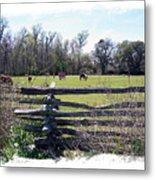 Horse Farm Metal Print