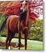 Horse Portrait Metal Print