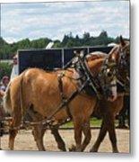 Horse Pull I Metal Print
