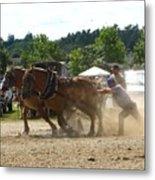 Horse Pulling Team Metal Print