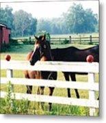 Horse Stable Metal Print