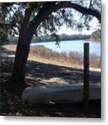 Horseshoe Lake At Orange Springs Florida Metal Print