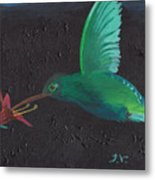 Hummingbird Feeding Metal Print by M Valeriano
