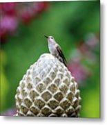 Hummingbird On Garden Water Fountain Metal Print