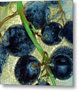 Ice Wine Metal Print