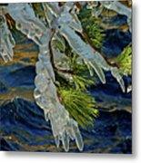 Iced Pine Metal Print