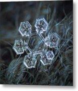 Icy Jewel Metal Print by Alexey Kljatov