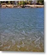 Icy Lake Metal Print