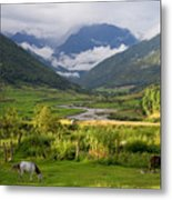 Idyllic Landscape Arunachal Pradesh Metal Print
