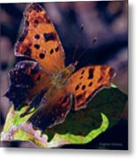 Imperfect Satyr Comma Metal Print