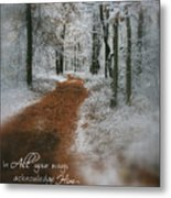 In All Your Ways Metal Print