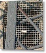 In Grates Metal Print