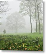 In The Morning10 Metal Print