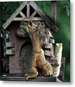 In The Nut House Metal Print