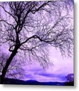 In Touch Metal Print