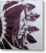 Indian Feathers Metal Print