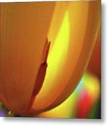 Inner Glow Metal Print