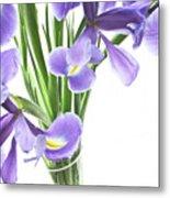 Iris In A Vase Metal Print