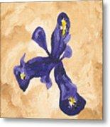 Iris Iv Pixie  Metal Print