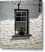 Irish Kettle Of Geraniums County Cork Ireland Metal Print