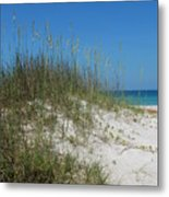 Island Sea Oats Metal Print