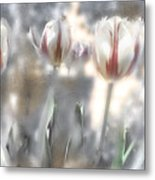 It Was A Beautiful Day Metal Print
