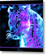 Jaguar  Metal Print by Nick Gustafson