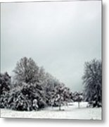 January Snow V Metal Print