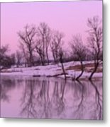 January Thaw  Metal Print