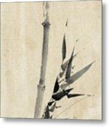 Japan: Bamboo, C1830-1850 Metal Print