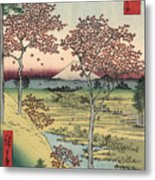 Japan: Maple Trees, 1858 Metal Print