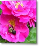 Jc And Bee Metal Print