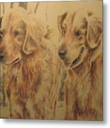 Joe's Dogs Metal Print