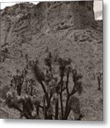 Joshua Hillside Metal Print