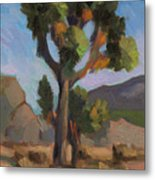 Joshua Tree 2 Metal Print