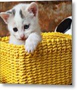 Kitten In Yellow Basket Metal Print by Garry Gay