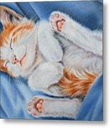 Kitten Sleeping Metal Print