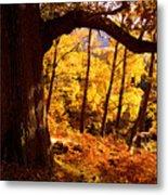 Lake District - Fall Colors Near Aira Force Metal Print