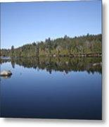Lake Side View Metal Print