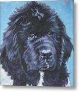 Landseer Newfoundland Puppy Metal Print
