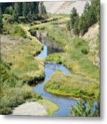 Latah Creek Metal Print