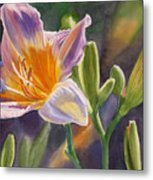 Lavender And Gold Lily Metal Print