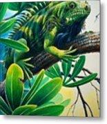 Lazin' Iguana Metal Print