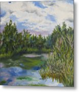 Lazy Afternoon In The Park Metal Print