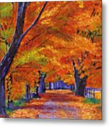Leafy Lane Metal Print by David Lloyd Glover