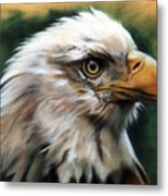Leather Eagle Metal Print
