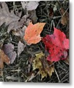 Leaves Are Falling Metal Print