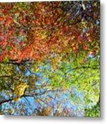 Leaves Of All Colors Metal Print