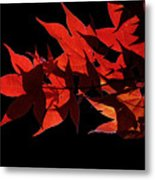 Leaves Of Red Metal Print
