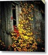 Leaves On An Old Barn Metal Print